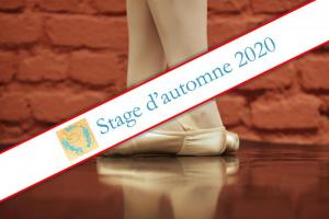 Stage d'automne 2020
